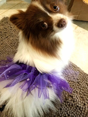 Sparkle Purple Tutu