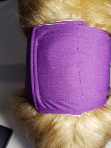 Purple Washable Reusable Belly Band for Dogs