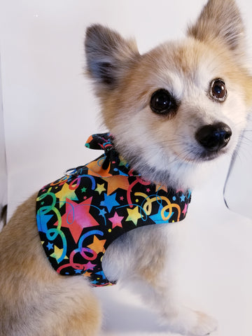 Celebration Birthday Party Dog Harness with Bow Tie