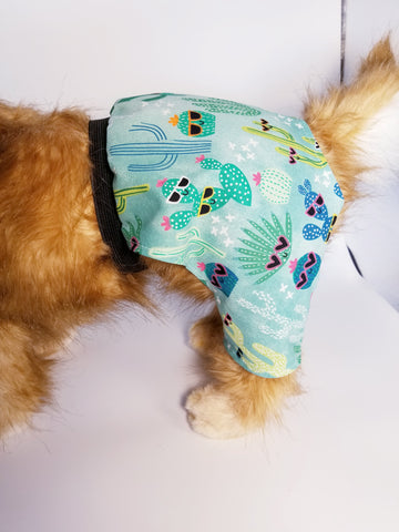 Cactus Cutie Shorts Swim Trunks Surfer Shorts for Dogs