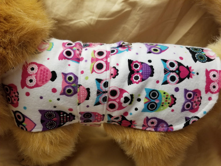 Colorful Owl Dog Coat