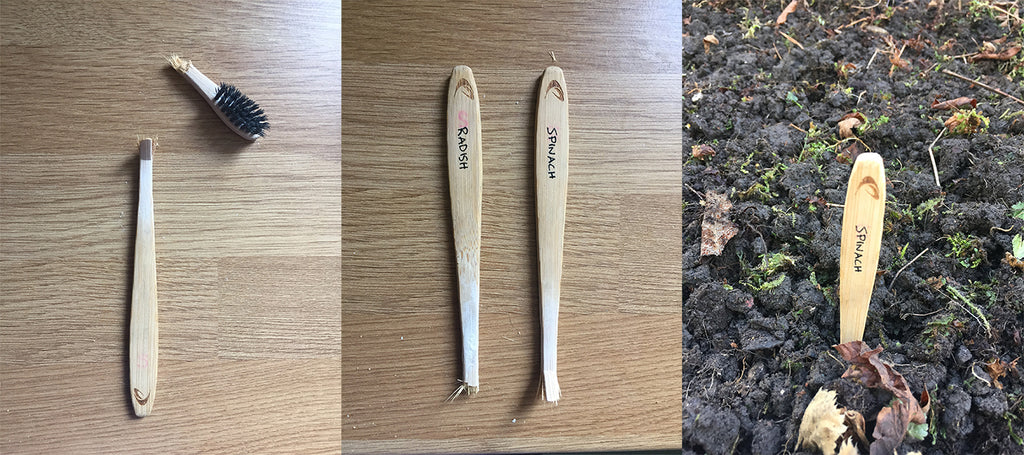 How to reuse a bamboo toothbrush as a plant label
