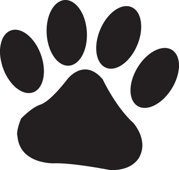 Safety Reflective Paw Print Iron-On