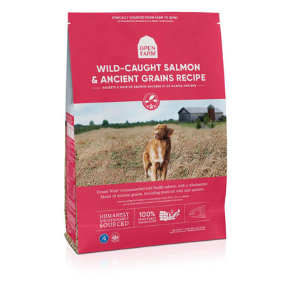 Wild Caught Salmon & Ancient Grains Dog Food