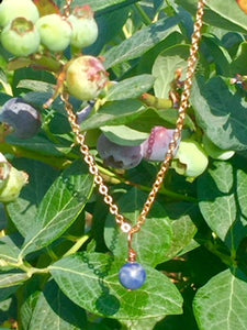 "Rose Gold ""Plant a Seed"" Necklace - Blueberry Bead to Add"