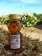 12 Ounce Orange Blossom Honey