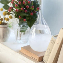 Genie Glass The Weather Predicting Storm Glass