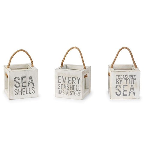 SHELL TREASURE BOXES