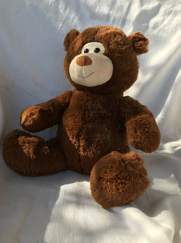 Chiropractic Teddy Bear with Clickable and Adjustable Spine
