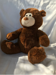 Arc4life Chiropractic  Teddy Bear With a Spine