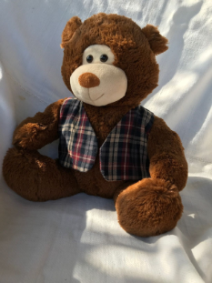 Chiropractic Adjustable Teddy Bear with a Spine With Vest