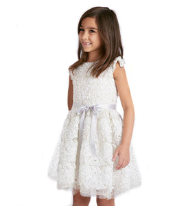 Ribbon Embroidered Ballerina Dress