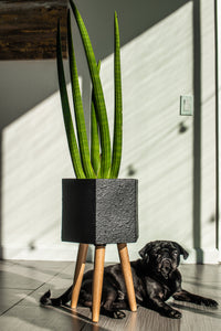 Paul Ceramic Planter