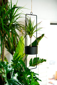 Upright Metal Hanging Planter-large-black