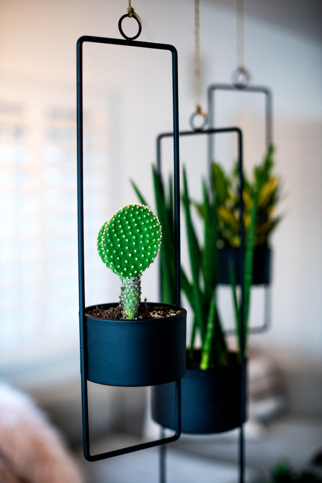 Upright Hanging Planter-small-matte black