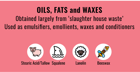 List of typical animal derived Oils, Fats and Waxes in cosmetics to stay away from if you're vegan