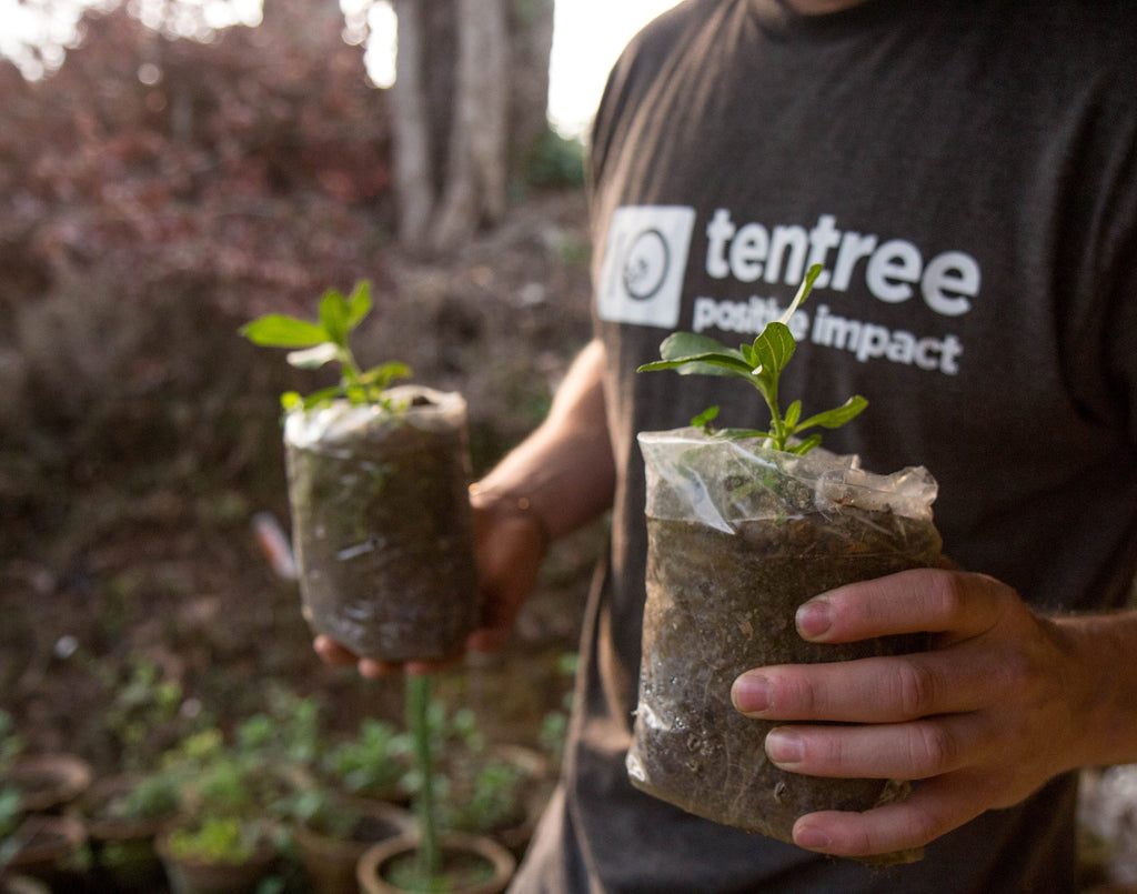 Leaving a Legacy with Arthur Kononuk of Tentree