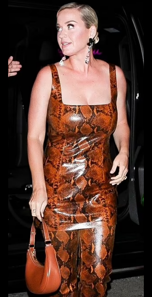 Katy Perry wears Sterling King Joan Turquoise Earrings in Jet & Petal Pink for a night out
