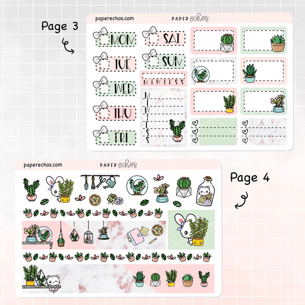 Succulents / Plants Hand Draw Weekly Kit