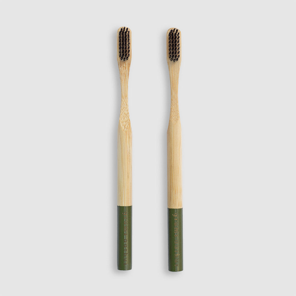 2 pack eco friendly bamboo toothbrushes