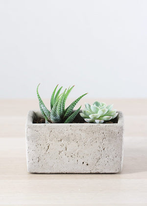 Ceramic Cement Planter