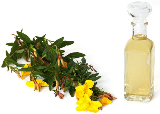 Oenothera Biennis (Evening Primrose Oil)
