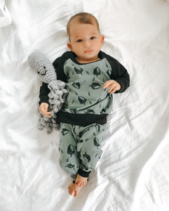 Acorn Raglan and Leggings Set