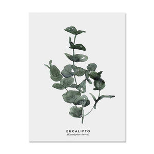 Watercolour Plant