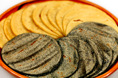 White and Blue Corn Tortillas