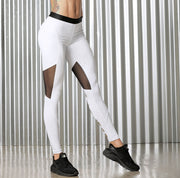 Combined Leggings Mesh 2258