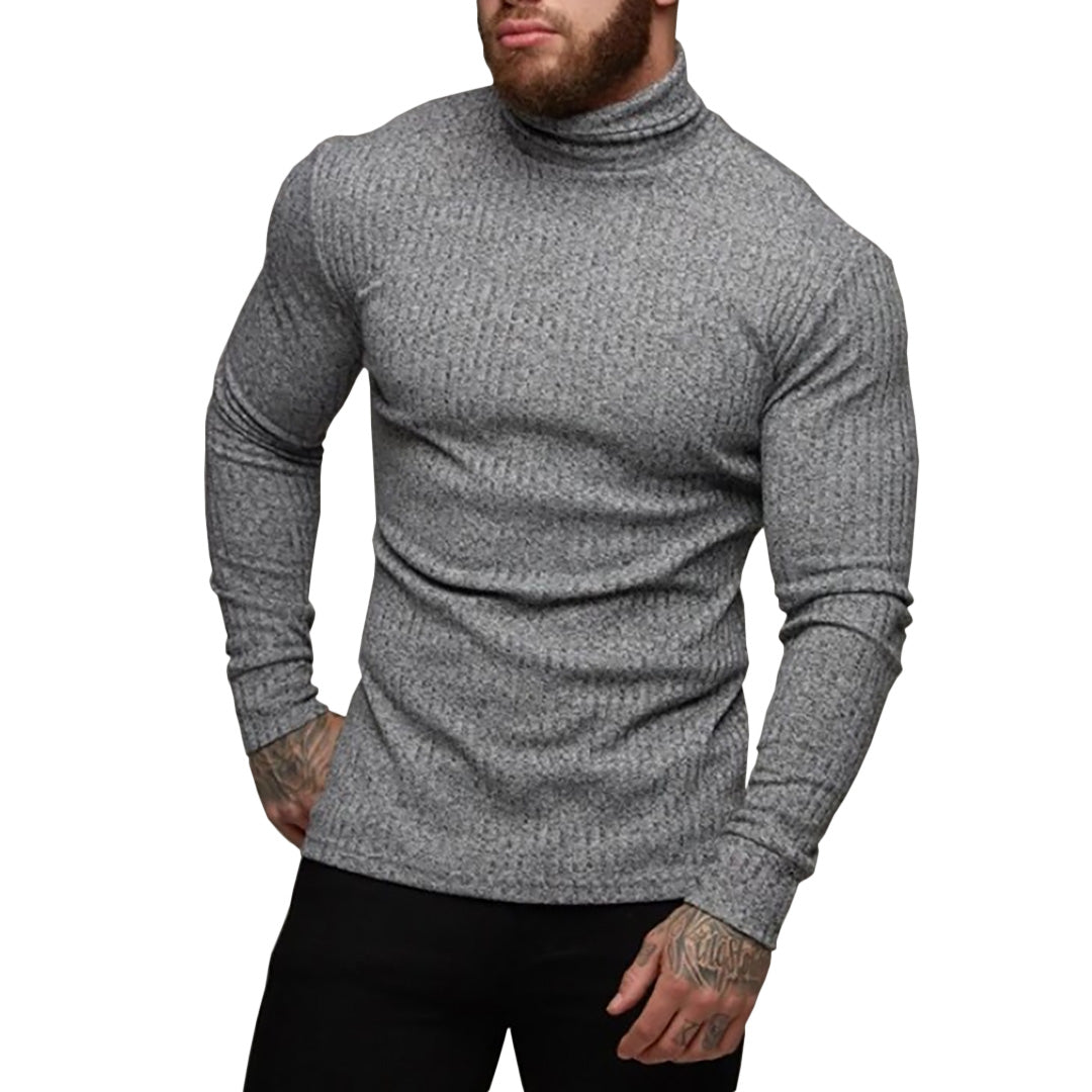 Pologize™ Demetrio Turtleneck Sweater