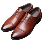 Pologize™ Elegant Formal Shoes