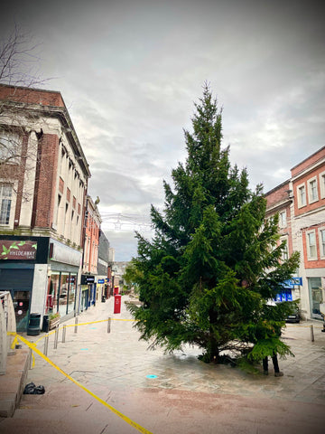 Large Christmas tree in town centre
