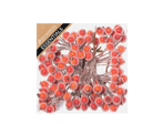 Picks - Frosted Berries in box
