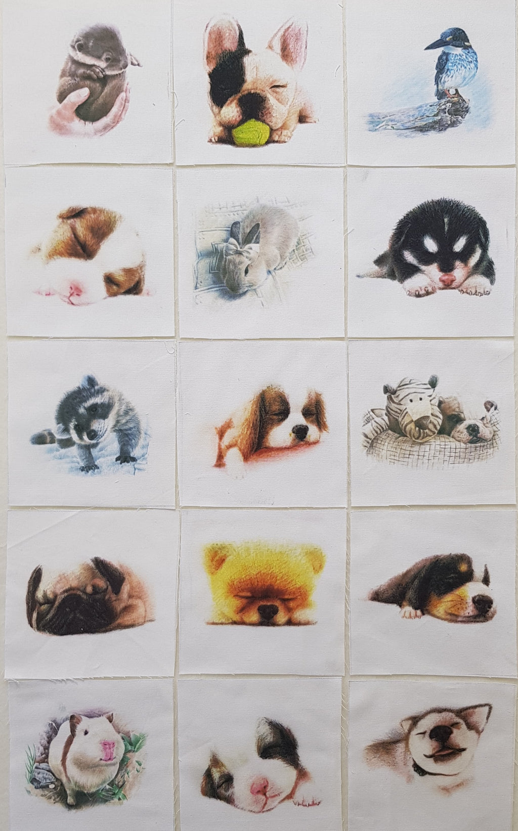 Assorted Dogs & Animal Prints (15pc - 15cm² each) - Lori's Fabrics & Quilts