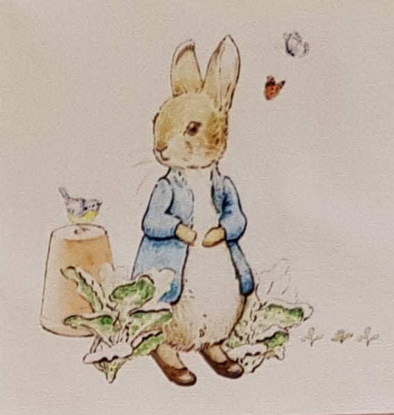 Assorted Peter Rabbit Prints (9pc - 15cm² each) - Lori's Fabrics & Quilts