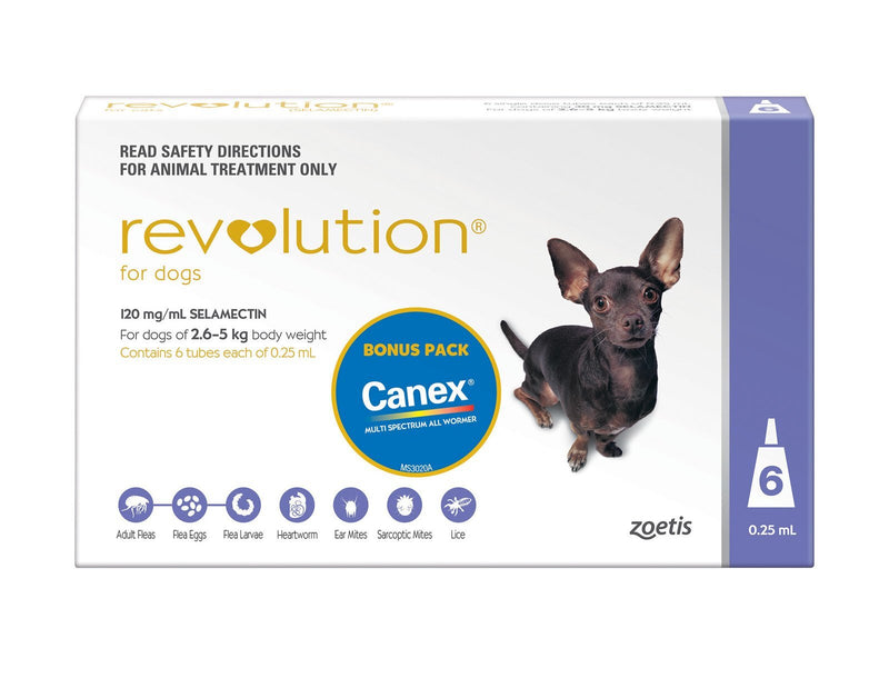 Revolution for Dogs 2.6-5kg  + Canex Intestinal Wormer (Purple) 6 pack