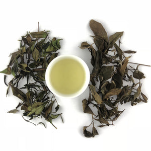 Aged Heart White Tea