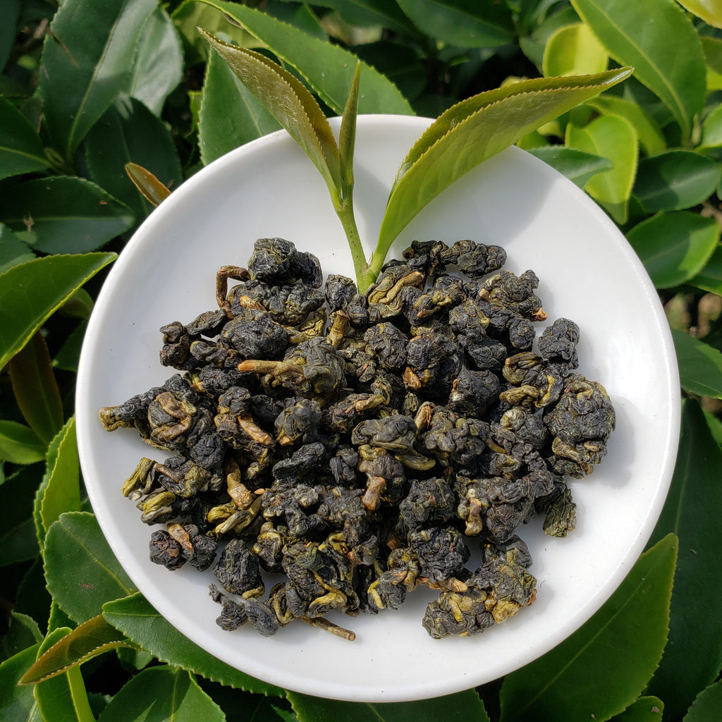 Big Leaf Oolong, Oolong