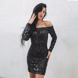Long Sleeved Sequinned Lace Dress