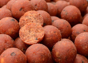 Solar bait quench ready made boilie - 15mm