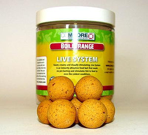LIVE SYSTEM  AIR BALL WAFTERS 15/18mm