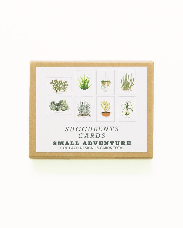 Small Adventure Boxed Notecard Set - Succulents