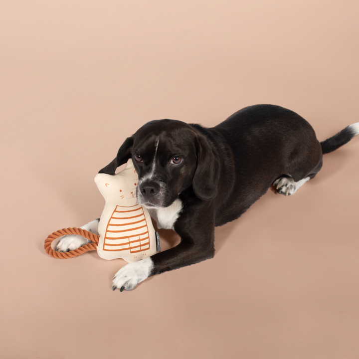 Fringe Studio Miss Kitty Dog Toy