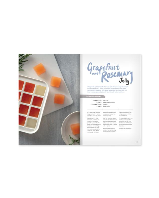 W&P Ice Tray Treats Book