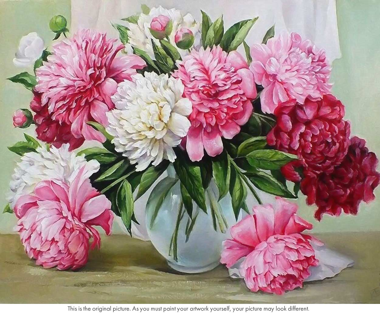 Red And White Peonies Flower Still Life Paint By Numbers
