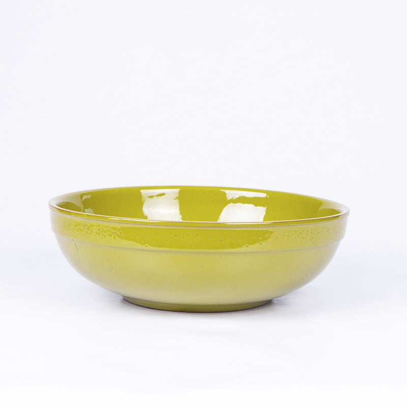 Large Thick Edged Fruit/Serving Bowl 29cm - Pistachio Terracotta