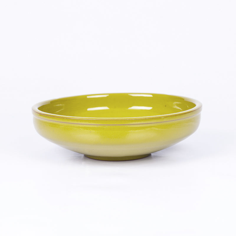 Large Salad/Pasta/Serving Bowl 25cm - Pistachio Terracotta