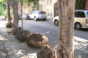 San Francisco Homeless Epidemic Solution: Place Boulders on The Sidewalk