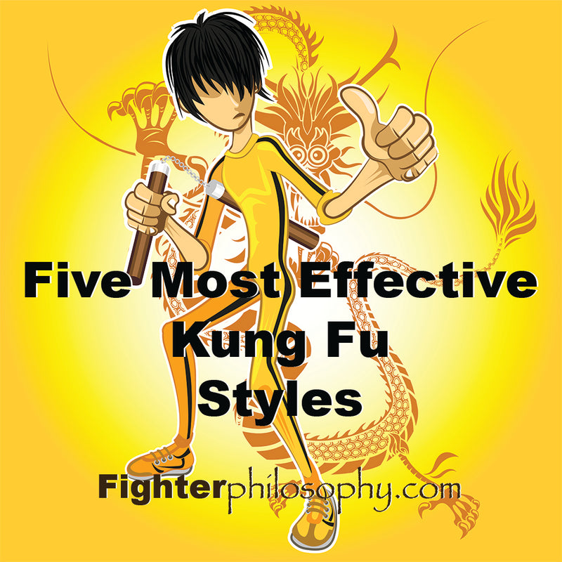 FIVE MOST EFFECTIVE KUNG FU STYLES
